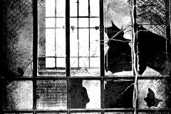 Ablakon_keresztül